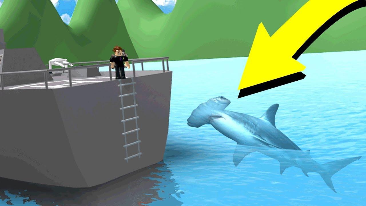 Using The New Hammerhead Shark Roblox Sharkbite Youtube