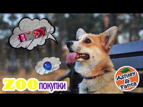 ZOOпокупки | Red Dingo | Охлаждающий коврик