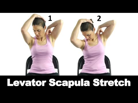 Levator Scapula Stretch - Ask Doctor Jo