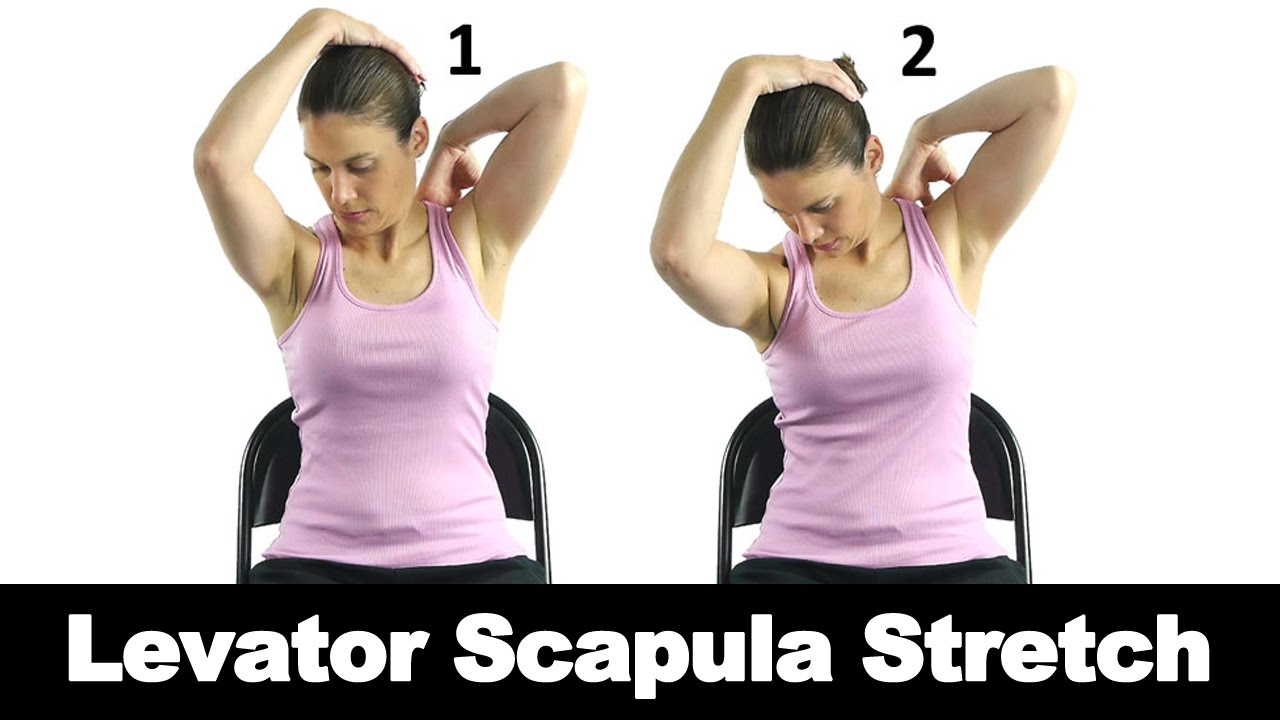 Levator Scapula Stretch - Ask Doctor Jo - YouTube