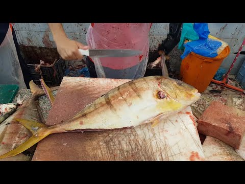 Golden Salmon Fish Fillet By Knife।Salmon Fish Fillet Skills By Knife।Salmon Fish Cutting Skills