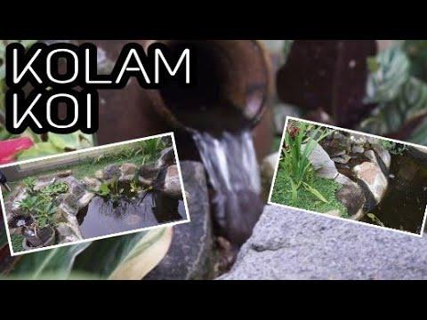 membuat kolam ikan koi minimalis | taman kolam - youtube