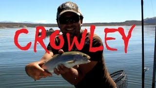 Crowley Lake Rainbow Trout Fall Fishing