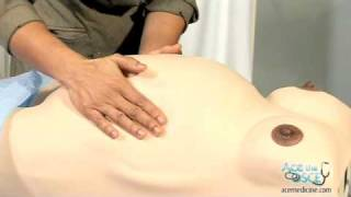 OSCE Clinical Skills -Pregnant abdomen