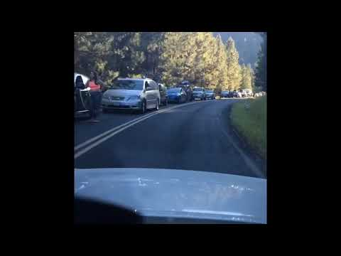 Oregon Eclipse traffic