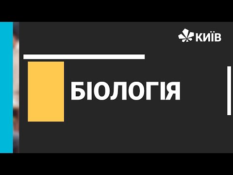 Телеканал Київ: Біологія, 7 клас, Молюски - 09.12.20 - #ВідкритийУрок