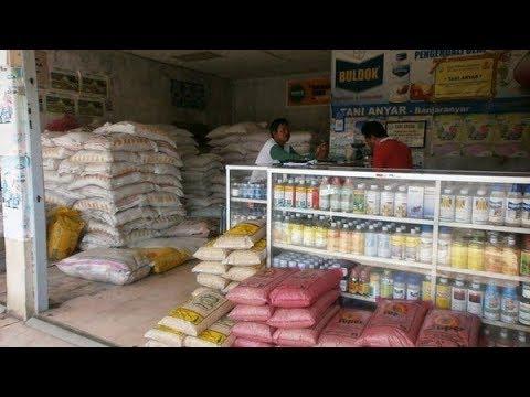 Rincian Biaya Modal Usaha Pupuk Pertanian untuk Pemula ...