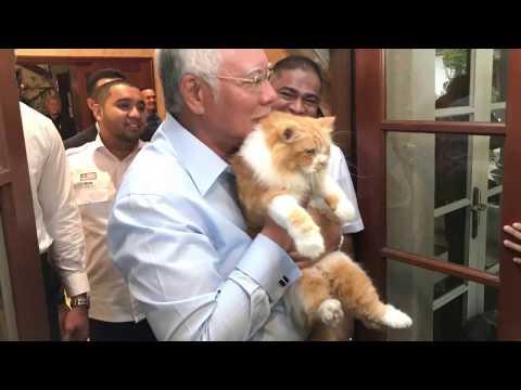 Kiki Kucing Kesayangan PM Najib