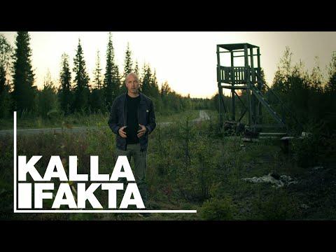 Kalla Fakta: Lappjävlar - TV4