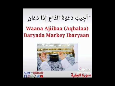 the most beautiful special shukran ya rabi