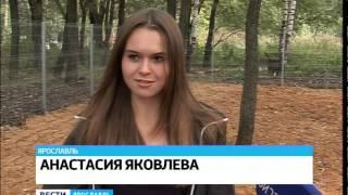 В Дзержинском районе Ярославля открылась площадка для собак