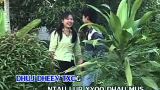 Paj Nra Thoj- Nco Txog Hnub Laus Instrumental