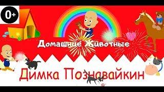 Димка Познавайкин #2: Домашние животные. Развивающие мультики для самых маленьких детей