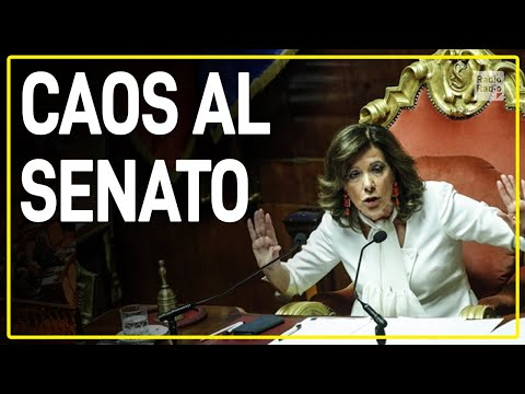 """BUFERA AL SENATO: GRIDA E VOTO ANNULLATO ► Calderoli: """"Sono entrate persone che non c'erano!"""""""