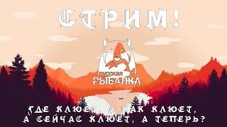 Русская Рыбалка 4 с Алексей BoJIoCaTbIu - Не ждали ? А я приперся )