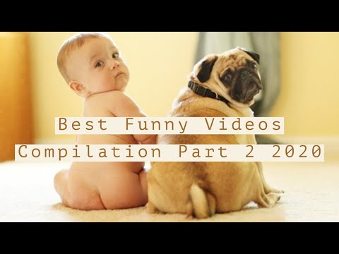 Funny Videos Compilation Part 2 2020 Best Funny Clips