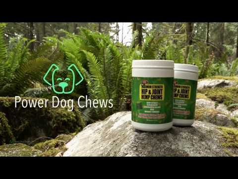 power-dog-chews:-dog-hemp-hip-&-joint-chews-to-relieve-pain-fast
