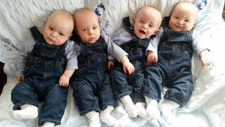 QUADRUPLETS And TRIPLETS - A Cute Triplet Babies And Quadruplets Compilation || Funny Baby Videos