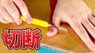 今日の関連動画☆ ドッキリ TOP10 https://www.youtube.com/watch?v=CdcL...
