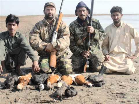 Surkhab Hunting In Pakistan Ahmad Nabi Sultan Swat