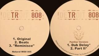 scott grooves detroit 808 dub delay panther version hq