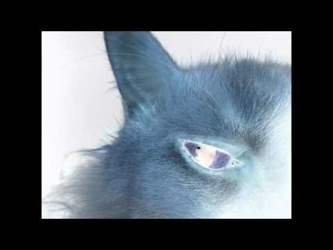 Tom's Negative Eye