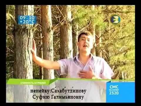 Искандар Газизов - Карагай урманында