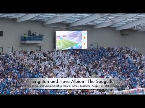 Brighton and Hove Albion - Amex Stadium first match.mov