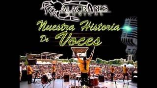 Alacranes Musical - Zapateado Encabronado 3