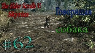 Прохождение The Elder Scrolls V: Skyrim.  Часть 62. Говорящая собака!
