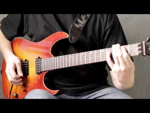 Megadeth - Tornado of Souls (Guitar Cover by Vladimir Shevyakov)