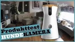 Hund allein zu Hause I Die FURBO Hundekamera im Produkttest I Überwachungskamera für Hunde