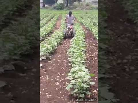 New Indian agriculture 3