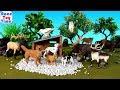 Fun Animals Toys Safari LTD - Learn Animal Names For kids