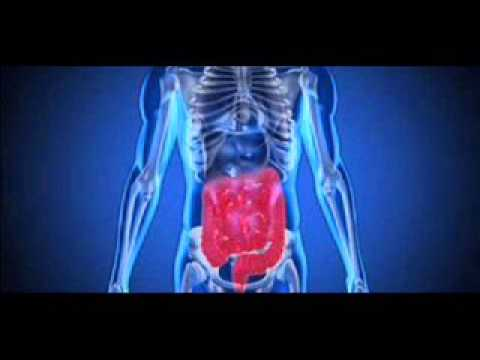 Pure Binaural Beats for Stomach Colon Digestion Aid with Isochronic Tone
