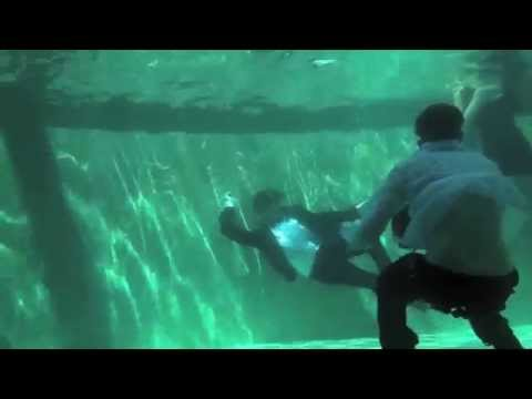 Submerged Behind the scenes: Tyler Shields new series of underwater photography