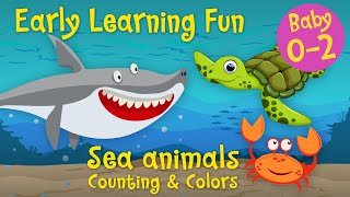 Early Learning Fun #5 🐳🐙🐠 Sea Animals 2 | Counting & Colors