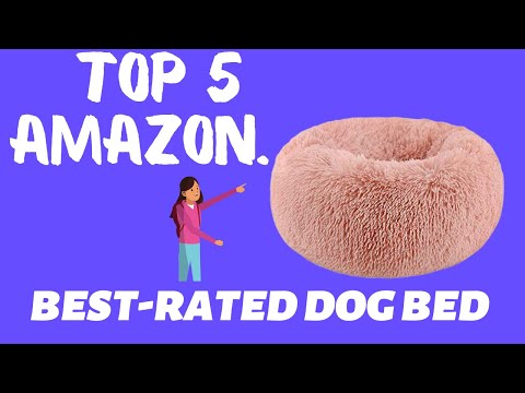 top-5-best-rated-dog-beds-on-amazon-today.