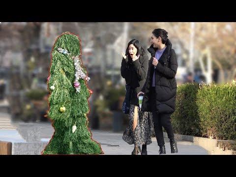 The Best Christmas tree Scare Prank Ever #2!   New Year's joke   BUSHMAN PRANK