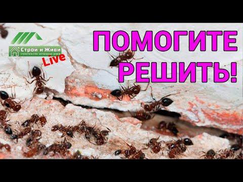 """Дом из клееного бруса от представителя """"Строй и Живи"""" в  Нижнем Новгороде."""
