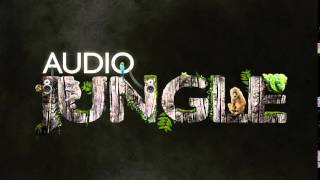 Music - A Thriller Indian Bass Potion   AudioJungle