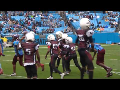 Durham WAR Eagles vs Winston Salem Vikings at Carolina Panthers stadium - 9 27 15