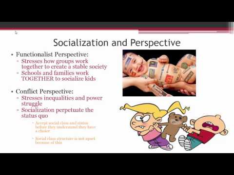 Socialization Overview