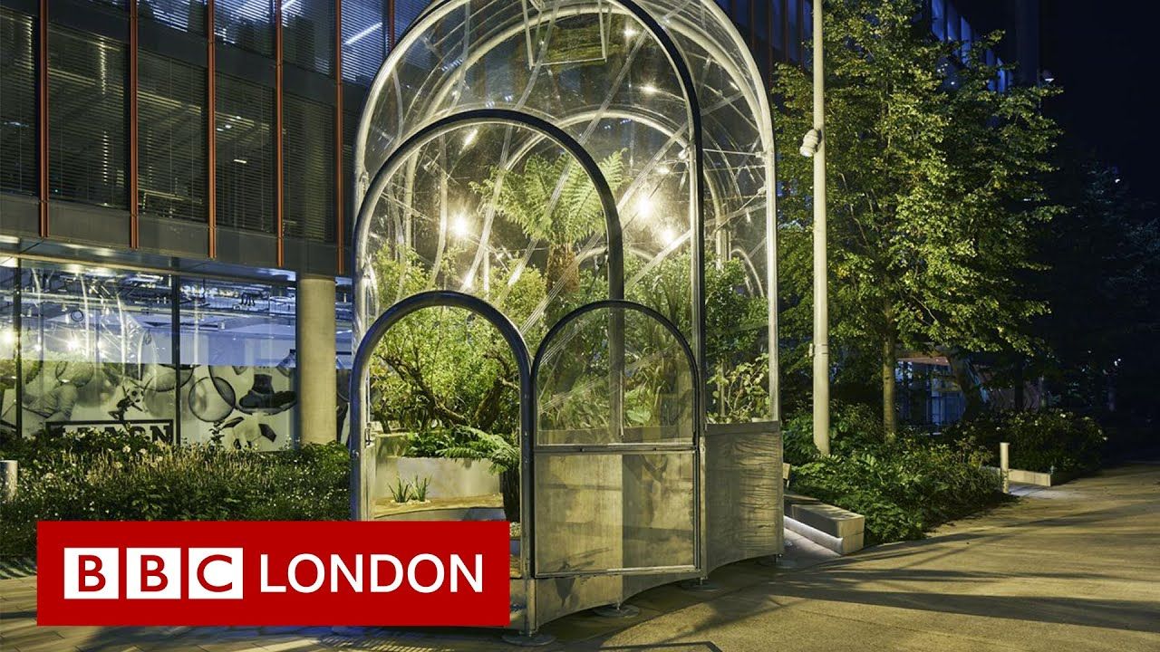 Climate Change: What could Londoners be growing in 2050?
