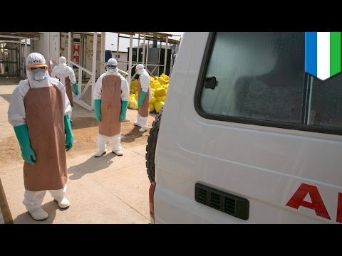 Ebola outbreak: nearly 8,000 people killed in West Africa as crisis intensifies