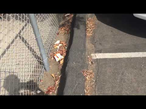 Iftin Charter School chronic trash issue