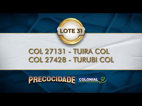 LOTE 31   COL 27131, 27428