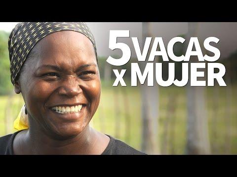 Vivo en Arg - Día Internacional de la Eliminación de la Violencia contra la Mujer - 25-11-15 de YouTube · Duración:  16 minutos 8 segundos