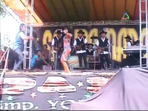 Mega Sylvia - Kebablasan - Tarling Dangdut Cirebonan (5-8-2014)