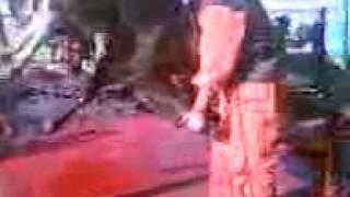 mustafa adar 2010 kurban kesimi